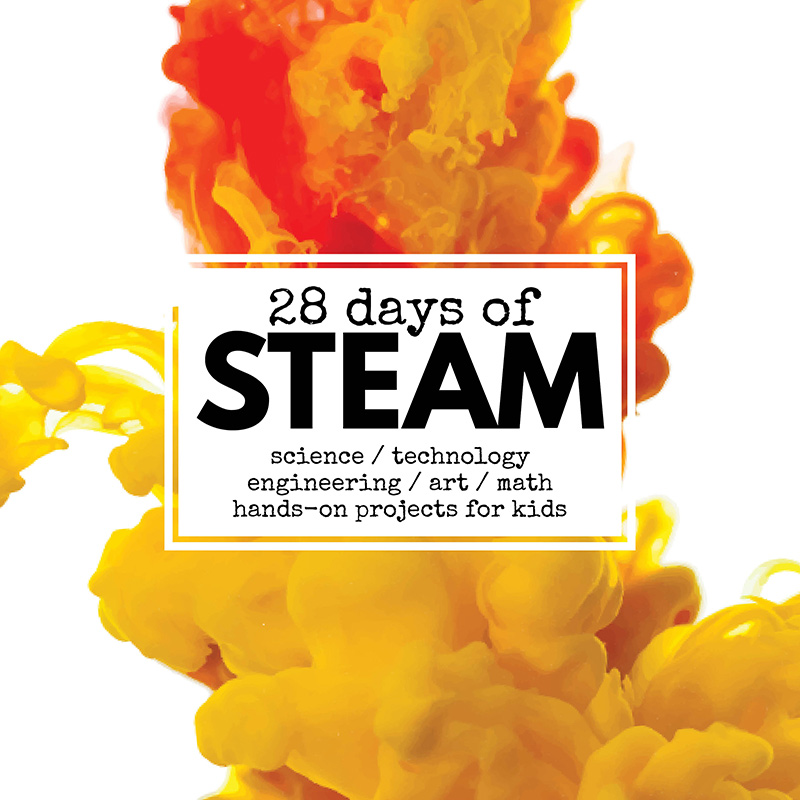 28 days of steam
