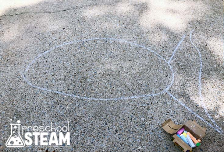 chalk fish