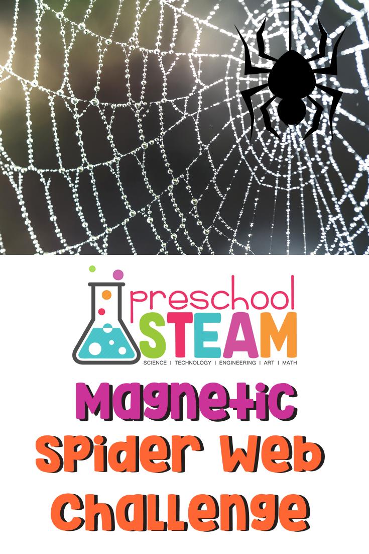 STEAM spider web
